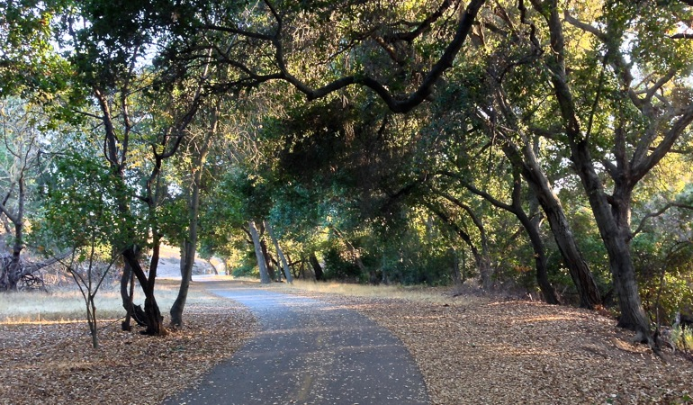 12-27 Friday on Coyote Creek Trail